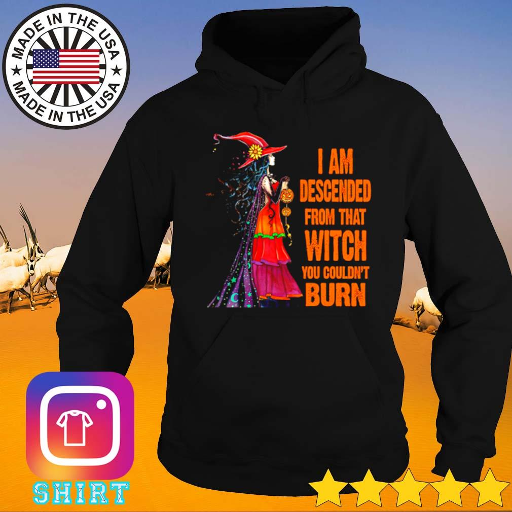 Halloween I am descended from that witch you couldn't burn s Hoodie black