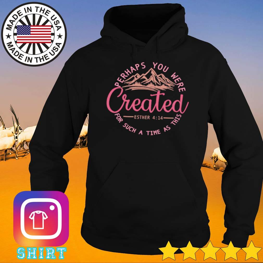Perhaps you were created for such a time as this s Hoodie
