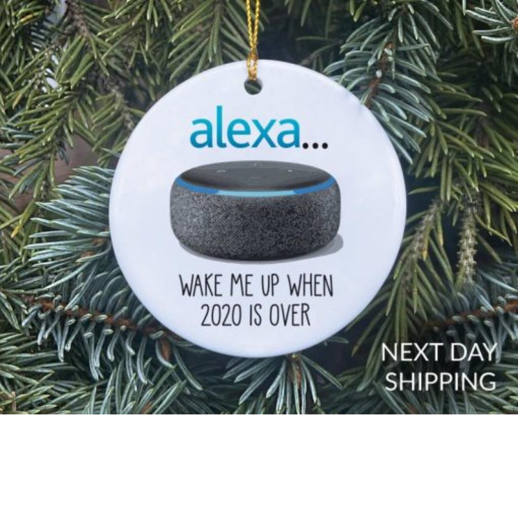 Alexa wake me up when 2020 is over ornament